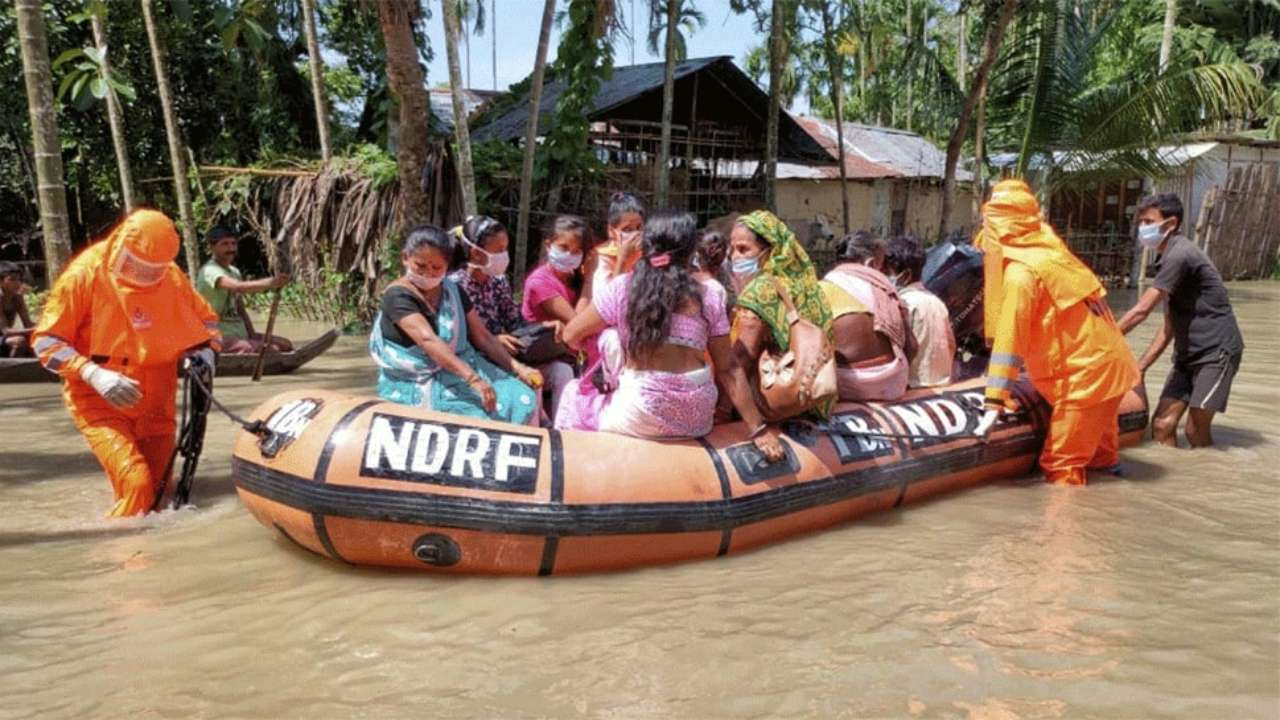 Assam flood: Normalcy returns gradually; no death reported in last 24 hours