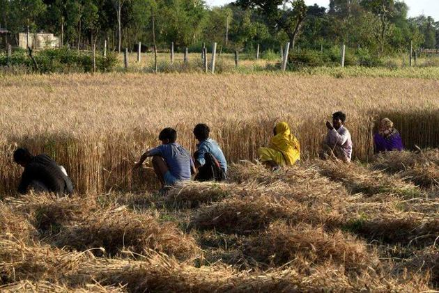 Active paddy residue burning events in Punjab, Haryana and 8 NCR districts of U.P. comes down significantly this year