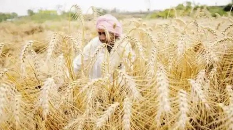 MSP approved for designated Rabi crops for 2022-23 is higher or equal to 1.5 times of the cost of production: Centre