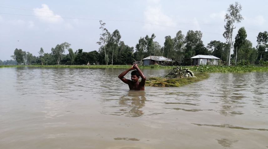 Rising sea level to submerge 17 percent of Bangladesh by 2050