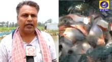 खेती के साथ मछली पालन कर पटना के चंदन कुमार आत्मनिर्भर भारत के सपनों को कर रहे हैं साकार