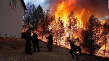 कैलिफोर्निया के जंगलों में लगी आग बेकाबू