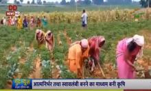 आत्मनिर्भर भारत : लीज पर खेत लेकर उगाई हरी सब्जियां