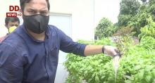 गुड न्यूज़ः नौकरी छोड़ हाइड्रोपोनिक पद्धति से उन्नतशील खेती कर रहे हैं लखनऊ के युवा