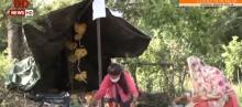 J&K: Udhampur girl helps villagers by selling vegetables amid lockdown
