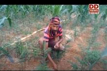 प्रधानमंत्री किसान सम्मान निधि: मानसून के समय खेतीबाड़ी के लिए आर्थिक मदद से मिला बड़ा सहारा