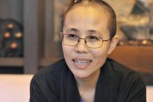 UN, China, Liu Xia, Liu Xiaobo
