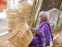 KVIC's BOLD to boost tribals' income and bamboo-based economy in Rajasthan