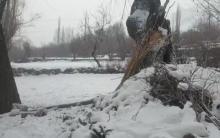 कश्मीर और लद्दाख के ऊंचाई वाले इलाकों में बर्फबारी, जम्मू क्षेत्र व दिल्ली और आसपास के इलाकों में बारिश