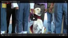 Woof, woof! Meet NDRF's new dog squad